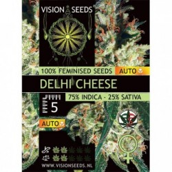 Delhi Cheese 10 Seeds Auto...