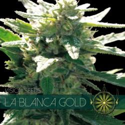 La Blanca Gold FEM 3 Seeds