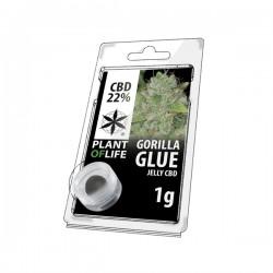 JELLY 22% CBD GORILLA GLUE 1G