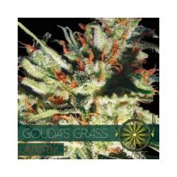 Vision Gouda's Grass 5 Semi...