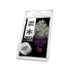 OG Kush CBD plant of life solid all' ingrosso