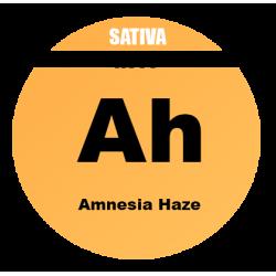 AUTO Amnesia Haze - 100 semi