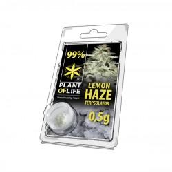 lemon haze infused cbd isolate plant of life