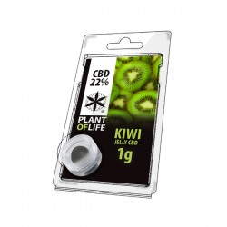 Jelly 22% CBD Kiwi 1g