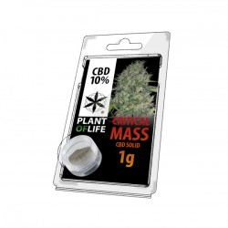 critical mass hash solid 10% wholesale italy