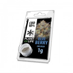 BLUEBERRY 10% SOLID 1G