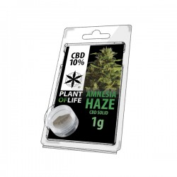 CBD Hash Amnesia plant of life 10%