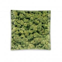v-syndiacte cannabis buds glass ashtray