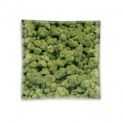 Posacenere in vetro Cannabis buds. V-Syndicate grossista