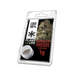 CBD 10% polline hash solid gusto strawberry diesel. In vendita all'ingrosso da plant of life