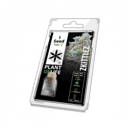 zkitlles 1 cannabis seed pack from plant of life. for wholesale only to grow shops and head shops
