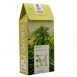 cannamate infusion of hemp and mate plant of life wholesale