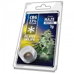 CBG 33% jelly lemon haze plant of life wholesale