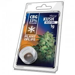 jelly33% CBG jelly hemp extraction  mango kush