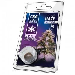 CBG Jelly 33% -Purple Haze