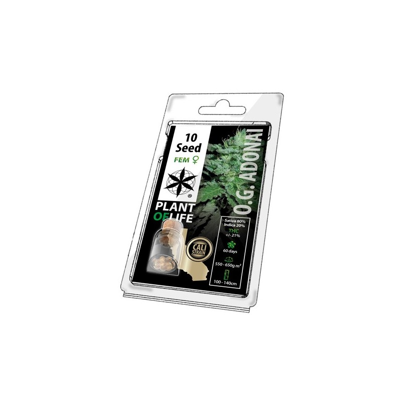 Cali OG Adonai 10 pack cannabis seeds for wholesale by plant of life