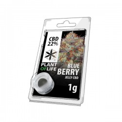 CBD Jelly 22% Blueberry 1g