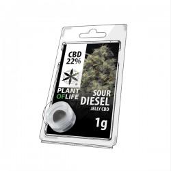 CBD Jelly 22% Sour Diesel 1g