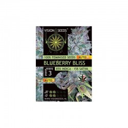 Blueberry Bliss Auto -...