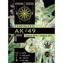 AK-49 Fem Vision - 10 Seeds