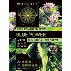 Blue Power Fem - Vision - 5...
