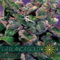 La Blanca Gold 3 seeds...