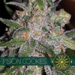 Vision Cookies 5 Seeds Fem...