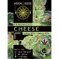 Cheese Semi Fem - Vision -...