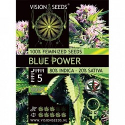 Blue Power Fem - Vision - 3...