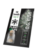 Feminized Cannabis Seeds   Plant of Life Wholesale