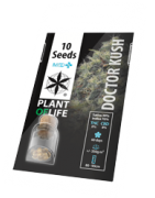 Medical Cannabis Seeds | Wholesale Plant of Life