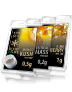 CBD Extractions